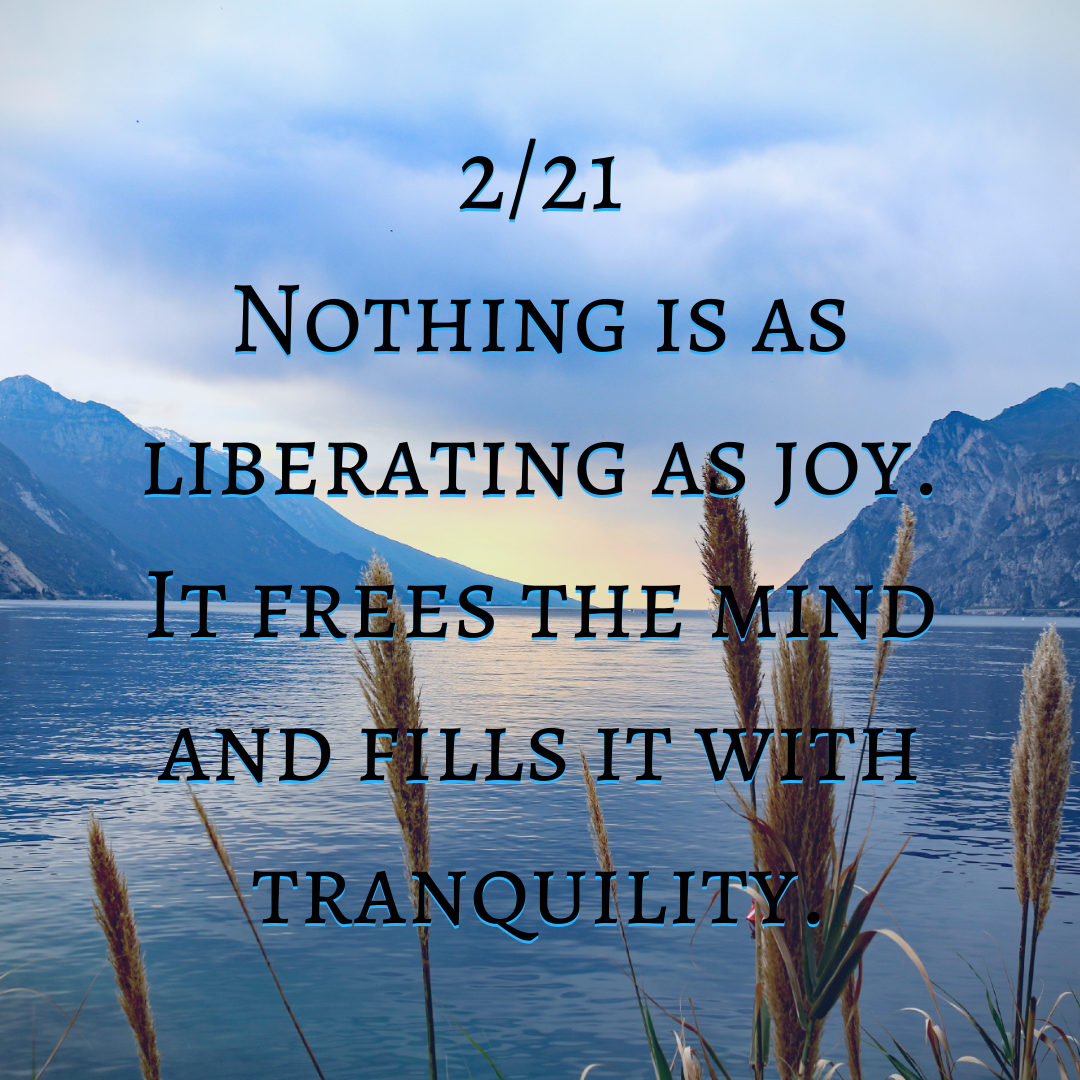 Nothing is as liberating as joy. It frees the mind and fills it with tranquility.